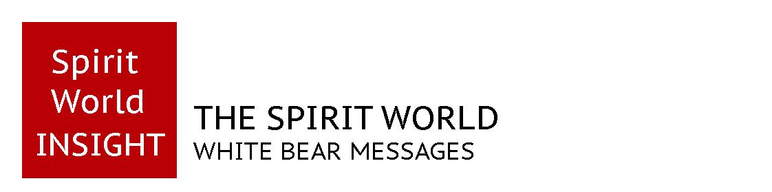 Spirit World Insight
