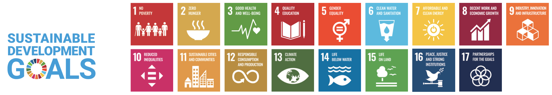 The Sustainable Development Goals Report 2020.